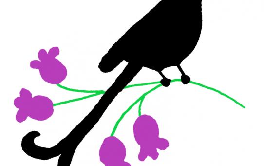 PTICA (BIRD)